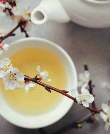 Weight Loss And Other Benefits Of White Tea